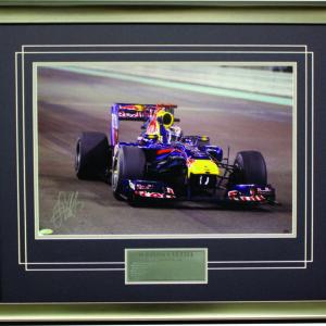 Sebastian Vettel 2010 RedBull racing F1 memorabilia